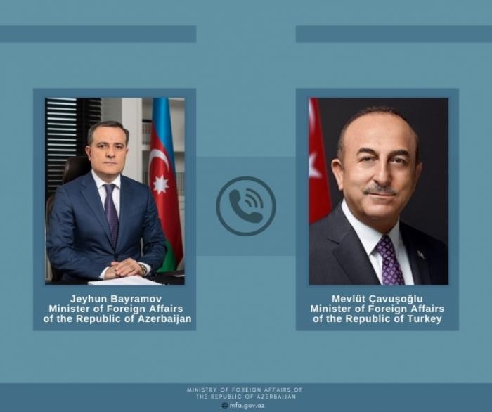 Azerbaijani, Turkish FMs discuss wildfires in Turkey