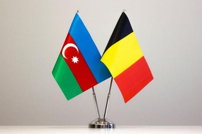Azerbaijan, Belgium discuss prospects for development of cooperation in renewable energy sector